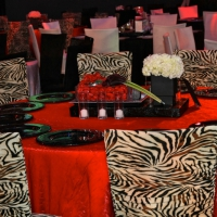 Stage and Decor 039