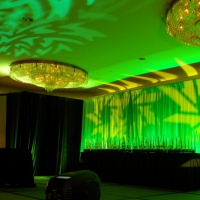 Stage and Decor 012