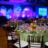 Stage and Decor 055