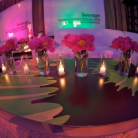 Stage and Decor 072