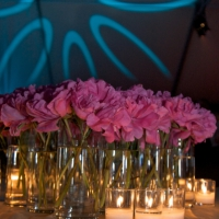 Stage and Decor 074
